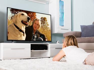 Cele mai simpatice filme cu animale de companie