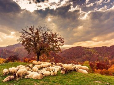 7 destinatii din Romania unde toamna este si mai frumoasa